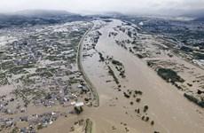 Siêu bão Hagibis: Nhật Bản tăng cường các nỗ lực tìm kiếm cứu hộ