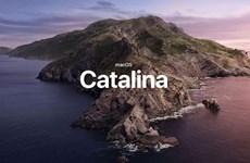 Hàng loạt sự cố xảy ra khi nâng cấp máy tính Mac lên Catalina
