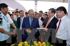 Thủ tướng dự triển lãm thành tựu 10 năm xây dựng nông thôn mới