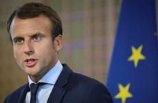 Pháp hối thúc gia hạn ngừng bắn giữa Thổ Nhĩ Kỳ và người Kurd ở Syria