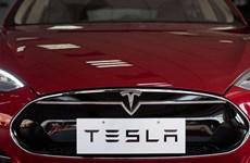 Lợi nhuận vượt kỳ vọng đẩy giá cổ phiếu của Tesla tăng mạnh
