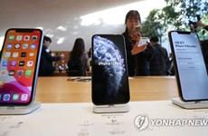 Apple đã bán được 130.000 iPhone 11 ở Hàn Quốc nhưng kém xa Note 10