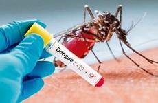 Ghi nhận thêm một trường hợp tử vong do sốt xuất huyết ở Đồng Nai