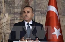 Thổ Nhĩ Kỳ khẳng định đã giúp Mỹ tiêu diệt thủ lĩnh IS Baghdadi