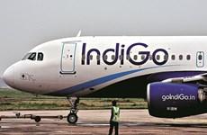 Hãng hàng không giá rẻ Ấn Độ chi hơn 33 tỷ USD mua máy bay Airbus