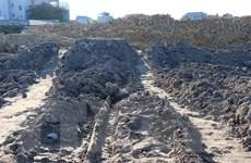 Bắc Ninh xử lý nghiêm tình trạng đào, đổ chất thải ở làng nghề Văn Môn