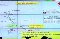 Bão số 5 đã mạnh lên một cấp, hướng về bờ biển Nam Trung Bộ