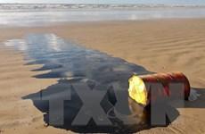 9 bang Đông Bắc Brazil đối mặt với thảm họa ô nhiễm từ sự cố tràn dầu