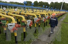 Tổng thống Nga tuyên bố sẵn sàng hạ giá bán khí đốt cho Ukraine