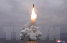 Triều Tiên phóng 2 vật thể không xác định ra Biển Nhật Bản