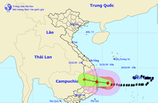 Bão số 6 giật cấp 13 cách bờ biển Bình Định-Khánh Hòa khoảng 170km