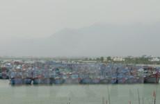 Bão số 6 đang áp sát, hai ngư dân bị kẹt trên lồng bè ở Khánh Hòa