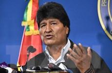 Tổng thống Bolivia Evo Morales đồng ý kêu gọi bầu cử lại