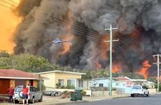 Miền Đông Australia ban bố tình trạng khẩn cấp phòng cháy rừng