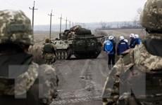 Nga, Đức muốn Ukraine trao quy chế đặc biệt cho Donbass