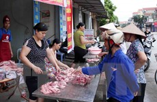 Cục Chăn nuôi: Giá lợn thịt lên cao không phải do thiếu nguồn cung