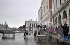 Venice ngập chìm trong biển nước: Italy ban bố tình trạng khẩn cấp