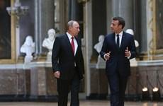 Lãnh đạo Nga, Pháp điện đàm về hội nghị thượng đỉnh Normandy