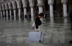 Italy: Venice trở lại cuộc sống thường nhật sau trận lụt lịch sử