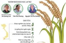 [Infographics] Vinh danh tác giả của gạo ST25 ngon nhất thế giới
