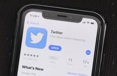 Twitter chuẩn bị chiến dịch xóa tài khoản không hoạt động