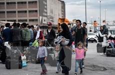 Séc kiên quyết phản đối cơ chế phân bổ người tị nạn theo hạn ngạch