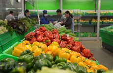 Xuất khẩu rau quả giảm nhẹ, Trung Quốc vẫn là thị trường lớn nhất