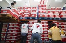 Hàn Quốc tái viện trợ y tế cho Triều Tiên vào năm sau