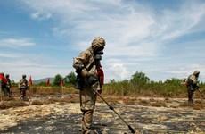 Nâng cao hiệu quả hỗ trợ sinh kế cho nạn nhân bom mìn tại Việt Nam