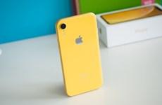 iPhone XR là mẫu điện thoại thông minh bán chạy nhất năm 2019