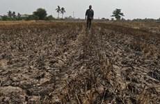 Thái Lan chuẩn bị đối phó với hạn hán trầm trọng nhất 10 năm qua