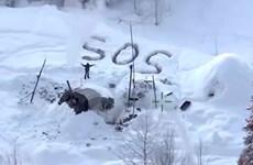 Mỹ: Một người sống sót sau hơn 20 ngày mắc kẹt trong tuyết ở Alaska