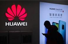 Huawei chi 26 triệu USD xây dựng ứng dụng cho hệ điều hành mới