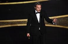 Giải Oscar: Joaquin Phoenix đoạt Nam diễn viên chính xuất sắc nhất