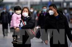 Trung Quốc: Số ca nhiễm mới 2019-nCoV bên ngoài Hồ Bắc liên tục giảm