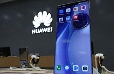Huawei mở bán điện thoại Mate 30 không có ứng dụng Google ở Anh