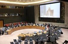 Hội đồng Bảo an kêu gọi một lệnh ngừng bắn lâu dài tại Libya