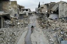 Việt Nam ủng hộ tìm kiếm giải pháp chính trị cho Syria
