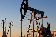 """""""Tiếp bước"""" Saudi Arabia, ba thành viên OPEC khác giảm giá dầu"""