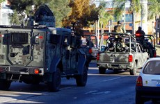 """Mỹ triệt phá """"chân rét"""" của tổ chức ma túy Mexico khét tiếng thế giới"""