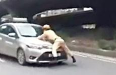 Tạm giữ hình sự lái xe taxi hất cảnh sát giao thông lên nắp capô