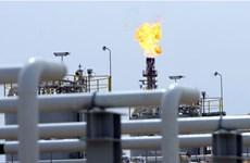 Gói kích thích kinh tế của Fed giúp giá dầu thế giới tăng nhẹ