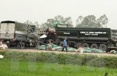 Nghệ An: Hai xe tải đấu đầu khiến hai người tử vong
