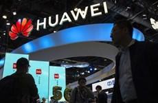 Huawei tăng trưởng lợi nhuận hàng năm thấp nhất ba năm qua