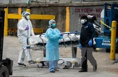 Mỹ ghi nhận 1.046 ca tử vong trong một ngày, nhiều bang giới nghiêm