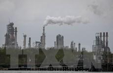 Mỹ giảm mạnh sản lượng khai thác dầu thô xuống gần 12 triệu thùng