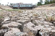 Hỗ trợ 530 tỷ đồng cho 8 tỉnh Đồng bằng sông Cửu Long chống hạn mặn