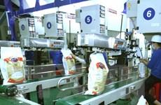 Danh sách doanh nghiệp trúng thầu gạo dự trữ nhưng từ chối ký kết
