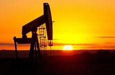 Giá dầu thế giới tiếp tục đà phục hồi ổn định, tăng gần 20%