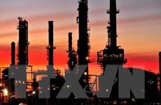 Giá dầu đi lên ba phiên liên tiếp song chưa thoát cảnh lao dốc